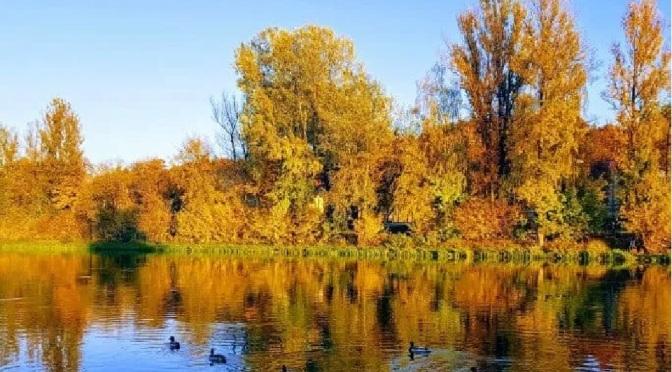 Tabiat Parkı Nedir?