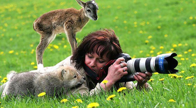 Doğa Fotoğrafçılığı Önerileri