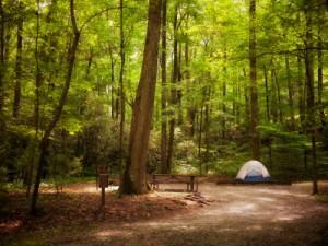 Kamp İpuçları: Doğru Kamp Yerini Bulma