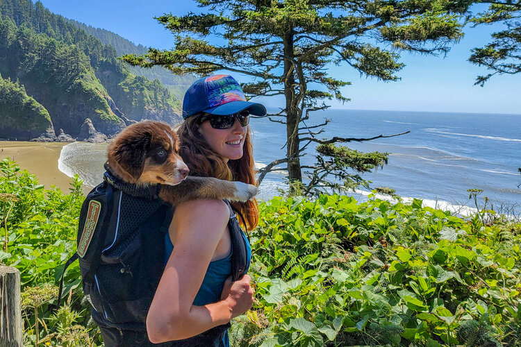 Dog carrying backpacks, like the  K9 Sport Sack , are a great way to tote young puppies along on your adventures