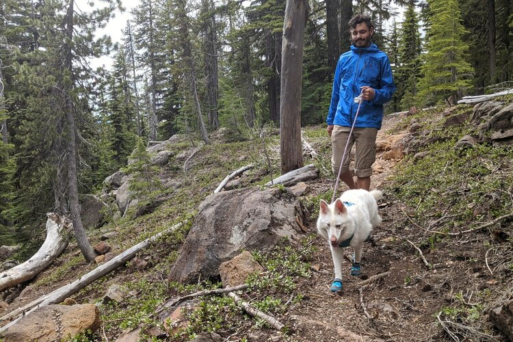 Keep your dog on leash if there's a steep drop off nearby